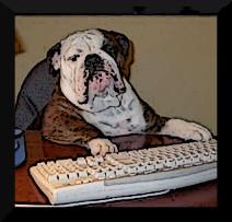 spammerdog